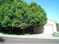 View 3541 S Barberry Pl Chandler AZ