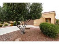 View 12906 W Chapala Dr Sun City West AZ