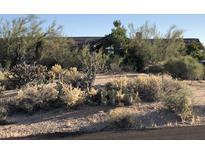 View 8967 E Lazywood Pl Carefree AZ