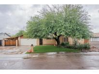 View 11828 N 42Nd Ave Phoenix AZ