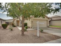 View 13009 W Cherry Hills Dr El Mirage AZ