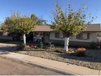 View 6231 W Marlette Ave Glendale AZ