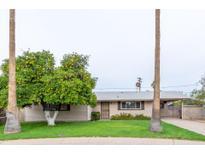 View 4541 N 75Th Pl Scottsdale AZ