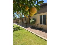 View 4220 W Eva St Phoenix AZ