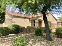 View 8766 W Aster Dr Peoria AZ