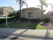 View 25806 N Singbush Loop Phoenix AZ