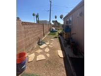 View 10807 W Palm Tree Dr Sun City AZ