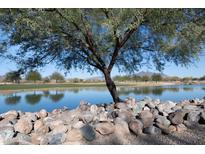 View 33575 N Dove Lakes Dr # 2047 Cave Creek AZ
