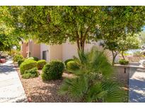 View 10030 W Indian School Rd # 246 Phoenix AZ