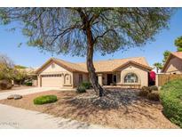View 15038 N 43Rd St Phoenix AZ