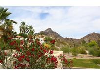 View 2955 E Rose Ln Phoenix AZ