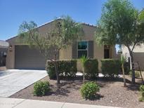View 21347 W Holly St Buckeye AZ