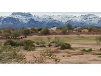 View 10136 E Southern Ave # 3091 Mesa AZ
