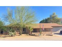 View 2101 W Julie Cir Phoenix AZ