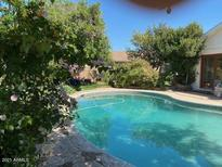View 2528 W Bloomfield Rd Phoenix AZ