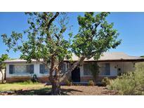 View 6907 E Willetta St Scottsdale AZ
