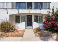 View 240 S Old Litchfield Rd # 113 Litchfield Park AZ