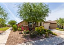View 1365 N Claiborne Mesa AZ