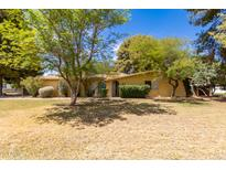 View 10316 W Catalina Dr Avondale AZ