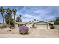 View 5012 E Presidio Rd Scottsdale AZ