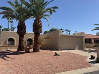 View 10418 E Chestnut Dr Sun Lakes AZ