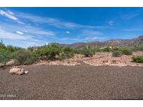 View 10100 E Cloudview Ave Gold Canyon AZ