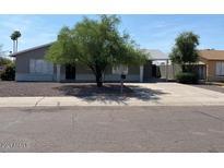View 5139 W Cypress St Phoenix AZ