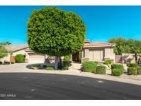View 1022 W Thompson Way Chandler AZ