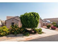 View 18405 W Denton Ave Litchfield Park AZ