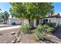 View 16244 N 16Th Pl Phoenix AZ
