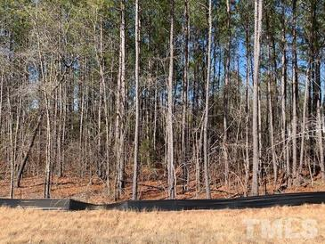 Photo one of 616 Meyers Place Ln Holly Springs NC 27540 | MLS 2367480