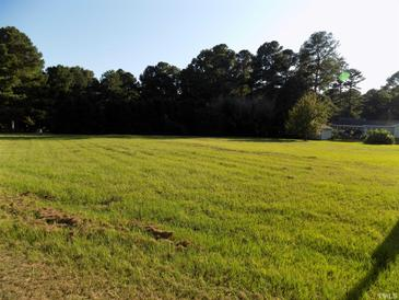 Photo one of 120 Grifford Dr Louisburg NC 27549 | MLS 2405985