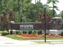 View 613 White Oak Pond Rd # Homesite 245 Apex NC