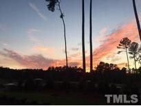 View 1401 Montvale Ridge Dr Cary NC