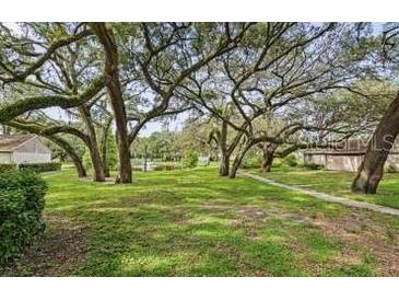 Photo one of 8607 Cattail Dr Temple Terrace FL 33637 | MLS A4507434