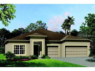 Photo one of 30022 Skylark Dr Wesley Chapel FL 33545 | MLS T3277238
