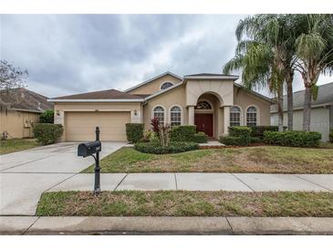 Photo one of 2807 Manning Dr Trinity FL 34655   MLS T3284700
