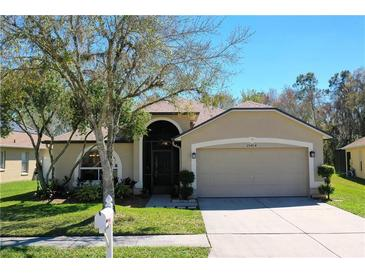 Photo one of 25414 Seven Rivers Cir Land O Lakes FL 34639 | MLS T3289801