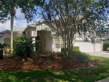 Photo one of 18306 Bankston Pl Tampa FL 33647 | MLS T3304233