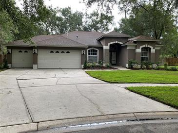 Photo one of 12504 River Birch Dr Riverview FL 33569 | MLS T3304679
