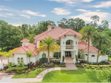 Photo one of 17125 Journeys End Dr Odessa FL 33556 | MLS T3310715