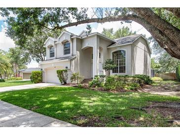 Photo one of 3623 Cold Creek Dr Valrico FL 33596 | MLS T3311472