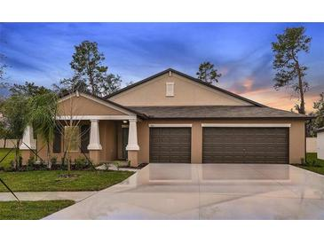 Photo one of 5465 Leslie Canyon Rd Wimauma FL 33598 | MLS T3311766
