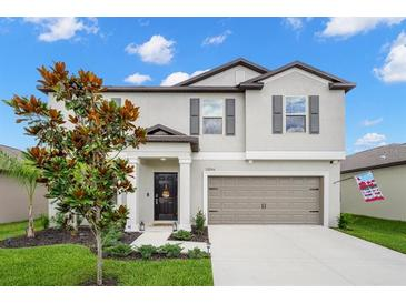 Photo one of 13206 Jeter Creek Dr Riverview FL 33579 | MLS T3311862
