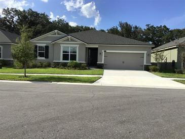 Photo one of 11406 Blue Woods Dr Riverview FL 33569   MLS T3311962