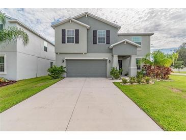 Photo one of 10266 Strawberry Tetra Dr Riverview FL 33578 | MLS T3328681