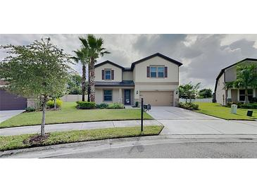 Photo one of 9314 Blueberry Ash Cir Riverview FL 33578 | MLS T3334158