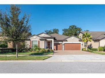 Photo one of 10411 Scarlet Chase Dr Riverview FL 33569 | MLS T3334770