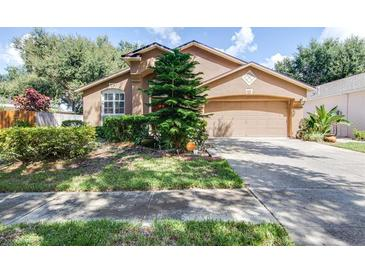 Photo one of 718 Somerstone Dr Valrico FL 33594 | MLS T3334900