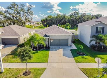 Photo one of 10602 Strawberry Tetra Dr Riverview FL 33578 | MLS T3334991